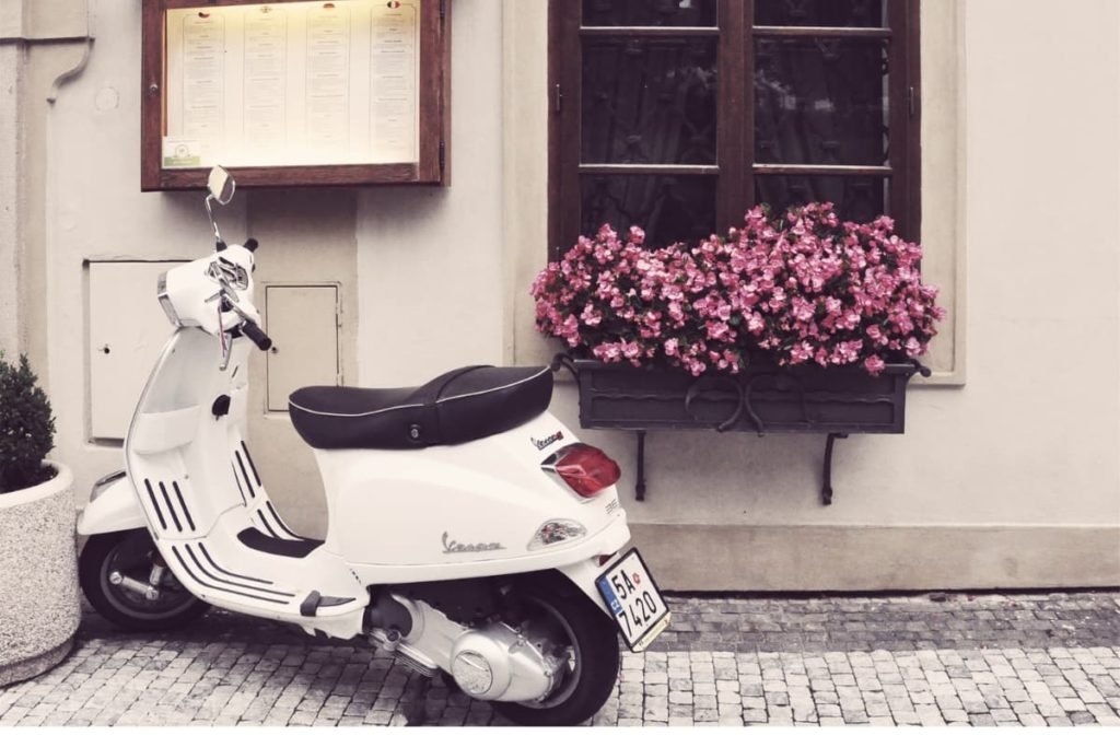 moped with only a motor intended for street use. has a license place.
